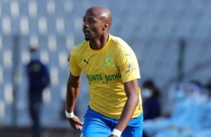 Langerman Sundowns